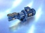 image of KRAL L Screw pump