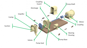 Figure 1: The components of centrifugal pump.