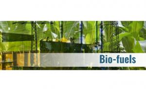 Durlon Bio-fuel